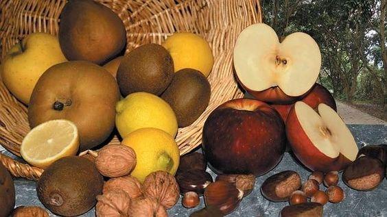 Deliciosas frutas