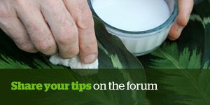 Share your tips on the forum