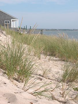 Gary and I stayed at his sister's cape cod cottage in July.  We traveled everywhere from here:  the Cape, Sandwich, Boston, Concord & Lexington, Salem and on and on!
