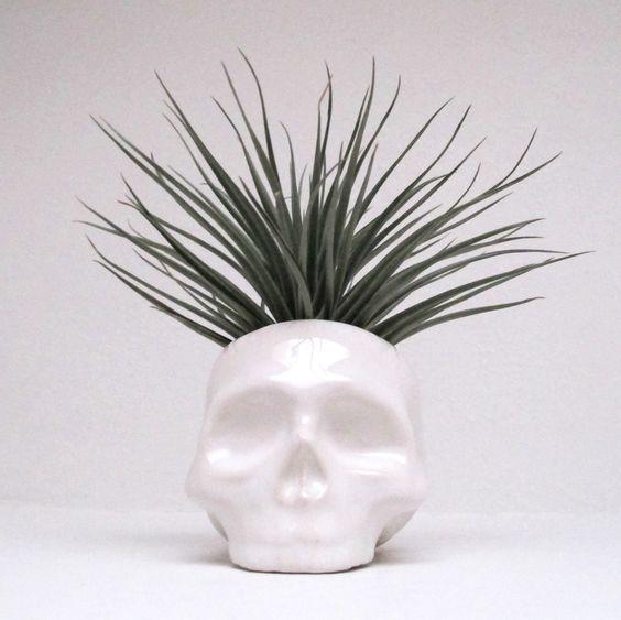 Ceramic Skull Planter perfect for cactus succulent or por mudpuppy