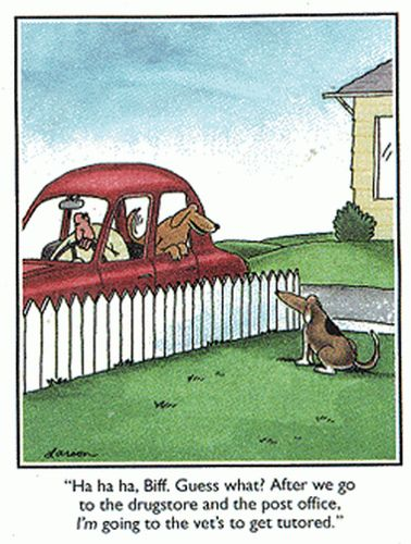 """""""Ha ha ha Biff. Guess What? After we go to the drugstore and the post office, I'm going to the vet's to get tutored."""""""
