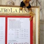 Kolumne der Kulissenmaus: Eine Venedig-Reise in 25 Bildern