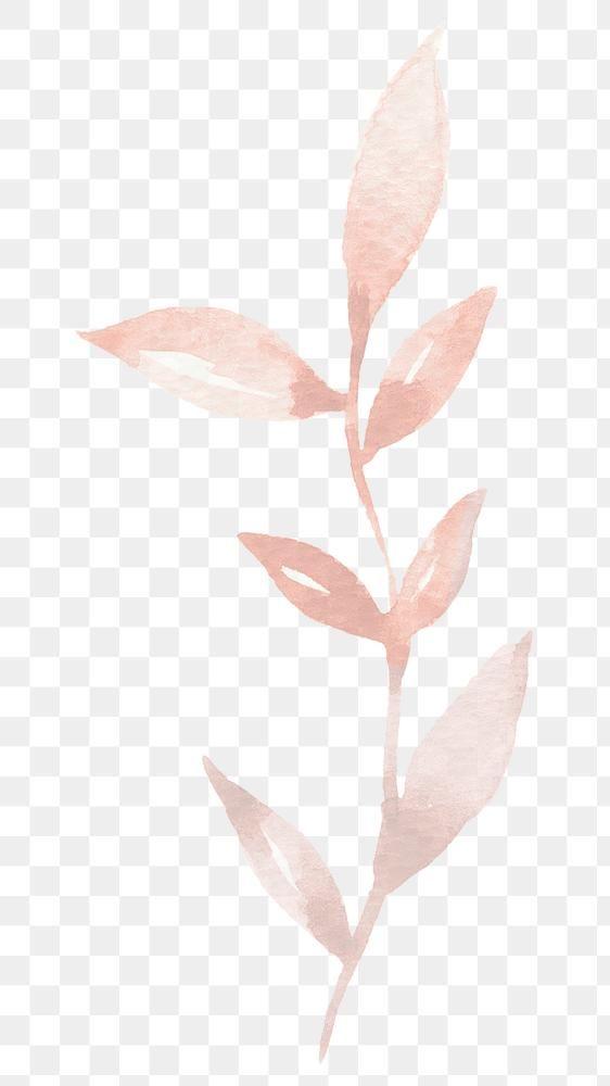 Luxury Rose Gold Leaf Png Sticker Transparent Premium Image By Rawpixel Com Adj Transparent Stickers Leaf Illustration Png