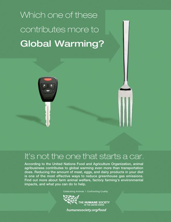 Can any one help with a paper about global warming?