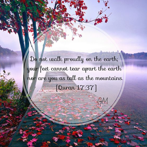 Do not walk proudly on the earth, your feet cannot tear apart the eartg nor are you as tall as the mountains. [Quran 17:37]