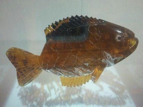 pez ambar