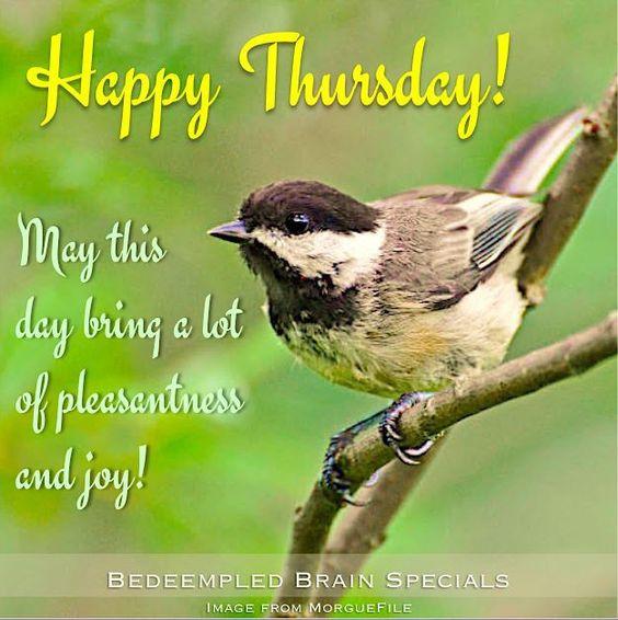 Happy Thursday thursday thursday quotes happy thursday thursday quote happy thursday quote