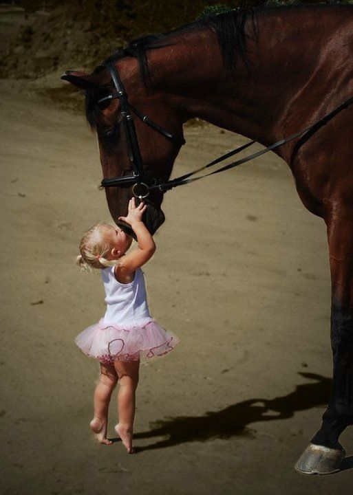 Little Girl ever so Gently kissing her Beautiful Horse <3:
