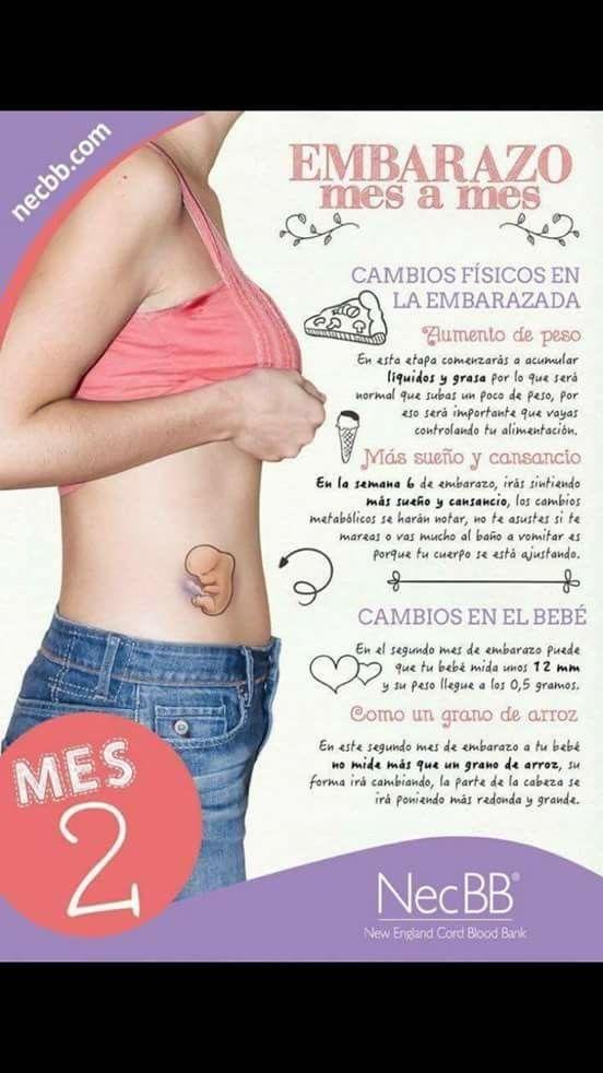 cambios físicos en el embarazo primer mes