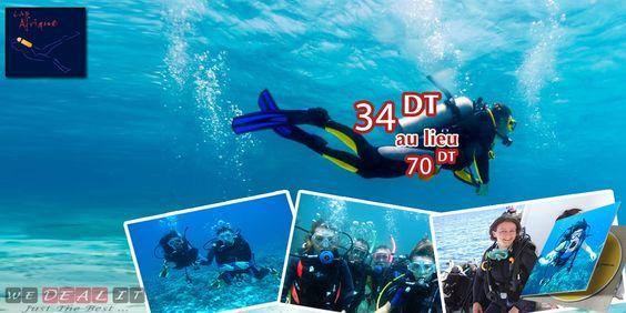 #MAHDIA : Volez comme un oiseau et explorez la beauté extravagante des fonds marins ! Vivez des sensations inédites avec un baptême de plongée sous marine à seulement 34 DT au lieu de 70 DT !  ----------->>> http://bit.ly/1mN2boe