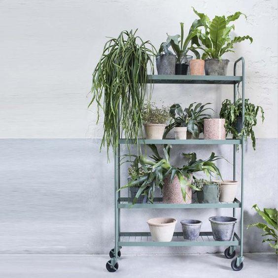 une étagère sur roulettes en métal pour l'intérieur et l'extérieur. Pratique comme desserte dans la cuisine, on peut l'utiliser comme étagère pour les fleurs et les plantes dans un petit jardin