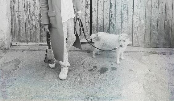 Mallorca im Februar. Rosa Hose, grüner Wollmantel und Hund.