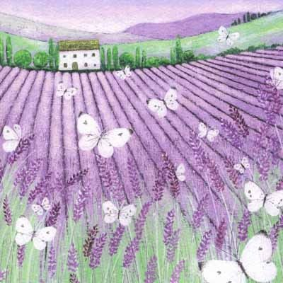 PL-ESK025 Pretty any-occasion greetings card illustrated by Lucy Grossmith with lavender fields in Provence: