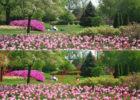 TULIP GARDEN Puzzle Answer Key See puzzle at wwwpinterestcom