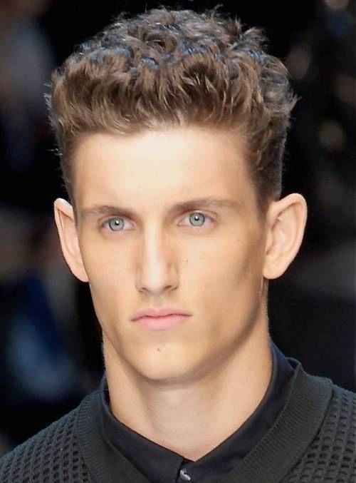 76 Hairstyles For Men With Big Ears Model Curly Hair Men Thick Hair Styles Long Hair Styles Men