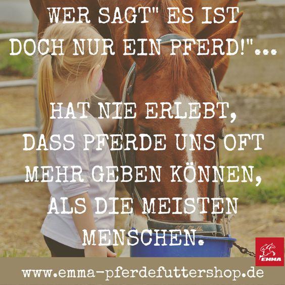 Besuche uns www.emma-pferdefuttershop.de