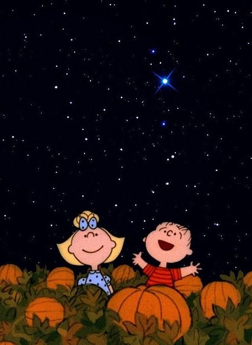 Sally and Linus wait for the Great Pumpkin from Charles Schulz's Charlie Brown? Inspiration for a Gratitude Pumpkin.