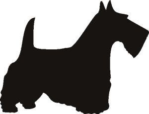 Scottish Terrier Wall Stencil- have a Scotty in  every room