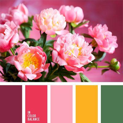 amarillo limón, amarillo y verde, color berenjena, color frambuesa, color fucsia, color oro, color rosado vivo, rosado, rosado fuerte, rosado oscuro, rosado y verde, tonos rosados.