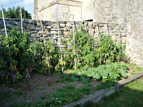 Casa Rural Apezetxea-huerta jardín-arruitz-larraun-navarra