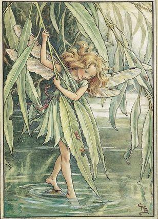 Tree fairy : Willow Fairy by Mary Barker