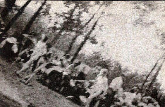 [Naked+Jewish+women+being+driven+towards+Gas+Chamber+V-Auschwitz+ll++Birkenau+.jpg]