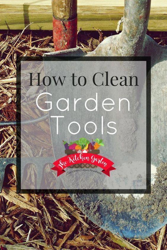 28df03302c106fb6dfe7b2335a4c626c - How Much Do Gardening Tools Cost