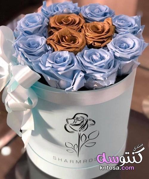 احلى بوكيهات الورود Diaper Cake Cake