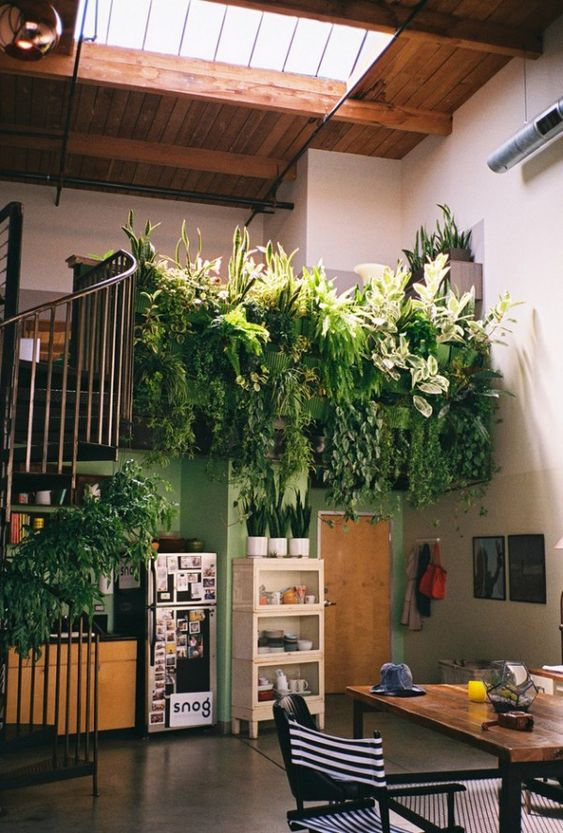 An indoor balcony garden.