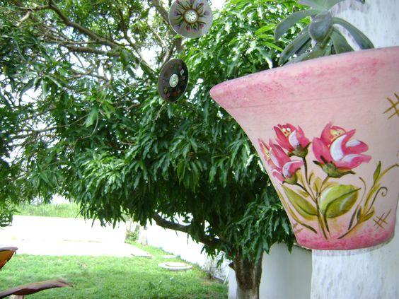 Vaso de barro ,pintado mão livre abrigando minha suculenta linda na sombra do meu pé de manga docinho.