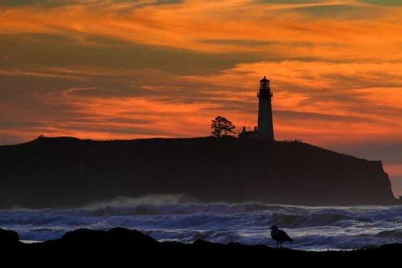Yaquina Head by Christian Flores-Muñoz, via 500px