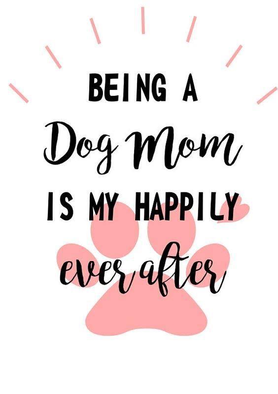 Retweet This Photo If You Re A Proud Dog Mom Dog Mom Quotes Dog Quotes Dog Quotes Love