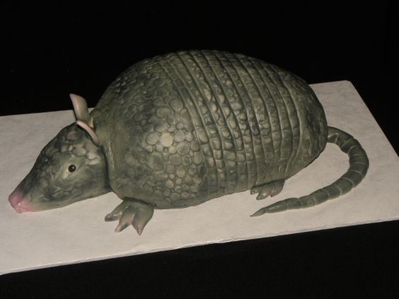 Armadillo cake - Chris is gonna get one of these for his birthday!