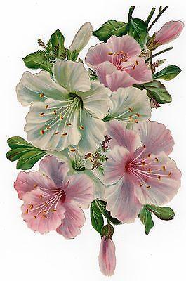 Glanzbilder - Victorian Die Cut - Victorian Scrap - Tube Victorienne - Glansbilleder - Plaatjes : Blumen: