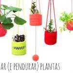 Como perdurar (e pendurar) plantas