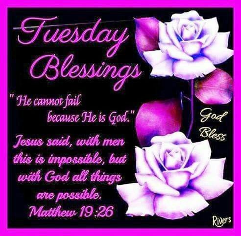 Tuesday Blessings | Tuesday greetings, Morning blessings, Daily scripture