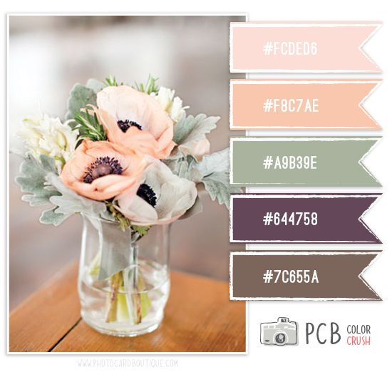 Love the contrast of the plum and peach! Color Crush Palette · 3.2.2013