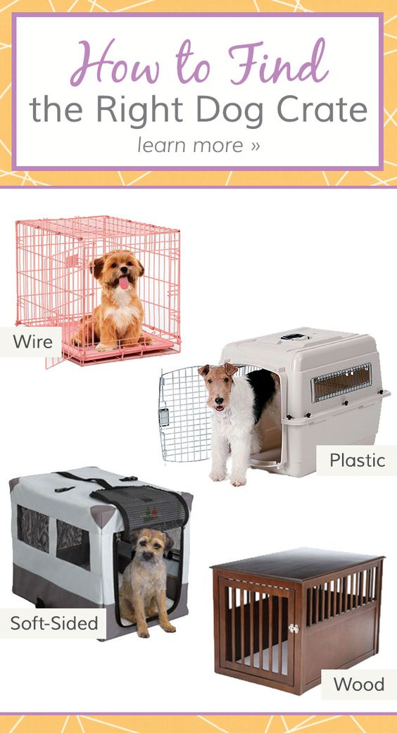 We break down the pros and cons of four common dog crate materials and give sizing recommendations.