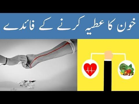 Quotes About Blood Donation In Urdu Inspiring Quotes
