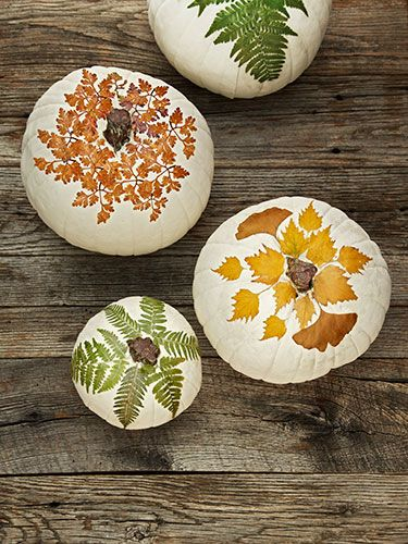 For these fall pumpkins, just use ModPodge to découpage a white gourd with pressed leaves. You can harvest the foliage from your own backyard.