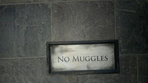 Harry Potter  Muggles