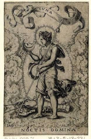 Image result for hans sebald beham