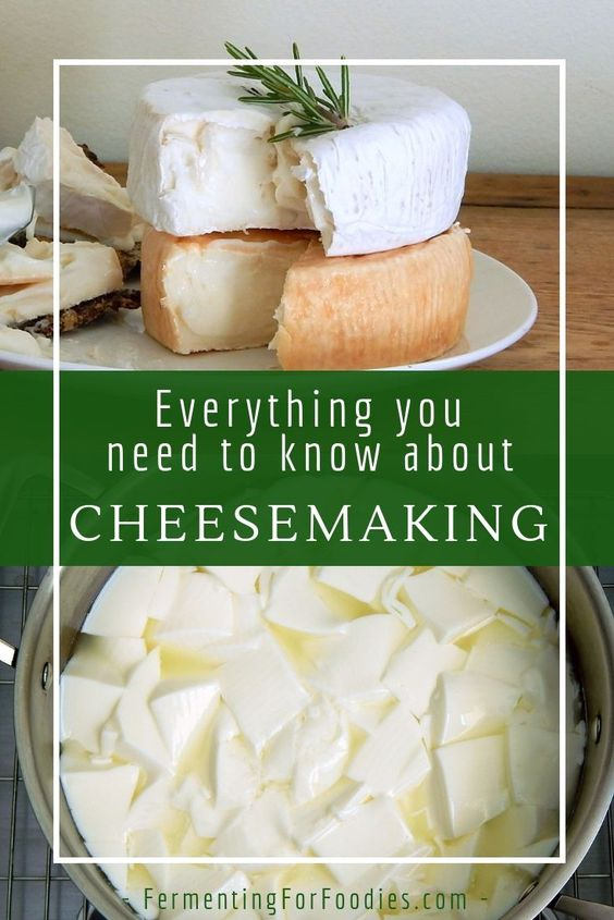 How to make cheese at home - Fermenting for Foodies