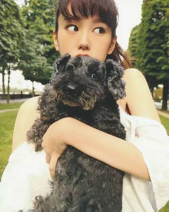 黒い犬と桐谷美玲