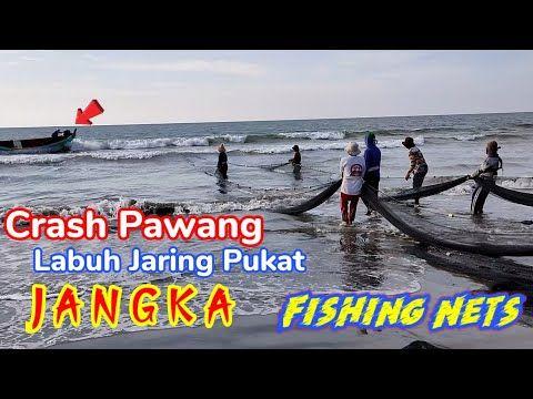 Pasang Pukat Jaring Ikan Di Pinggiran Pantai Jangka Net Fishing Traditional Youtube Pantai Ikan Jangka