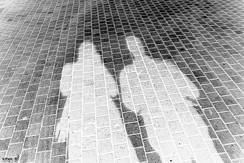 El lado oscuro de la vida cotidiana http://galefod.blogspot.com.es/2013/04/introduccion-la-sombra.html