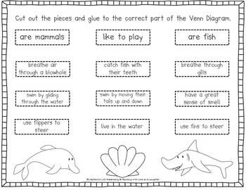 Dolphin and Shark Venn Diagram and Writing Activity   Kinder ...
