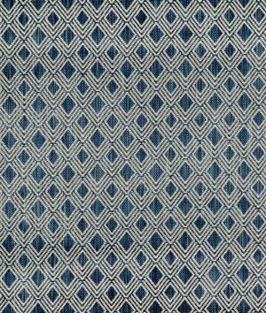 Ralph Lauren Bulan Weave Ink Fabric
