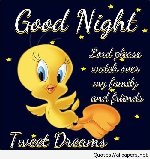 Good Evening Quotes And Sayings: Funny Cartoon Good Night Tweety Picture Quote