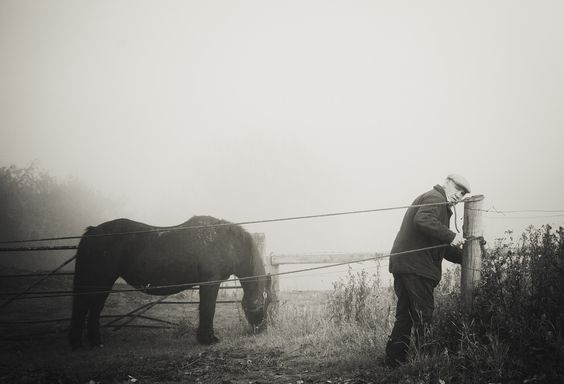old farmer with a horse in the fog, wakefield https://www.picturedashboard.com